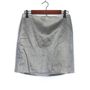 Ann Taylor Silver Gold Metallic Mini Skirt